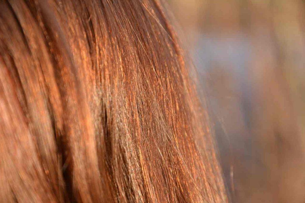 queda de cabelo rj